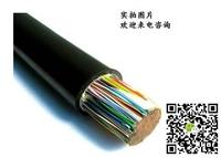 信息:MHYAV矿用监测电缆,MHYV阻燃信号电缆