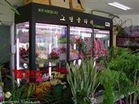 鲜花展示柜 鲜花冷藏展示柜 鲜花展示