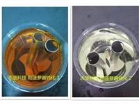 不銹鋼鈍化液 不銹鋼矩形管件鈍化液