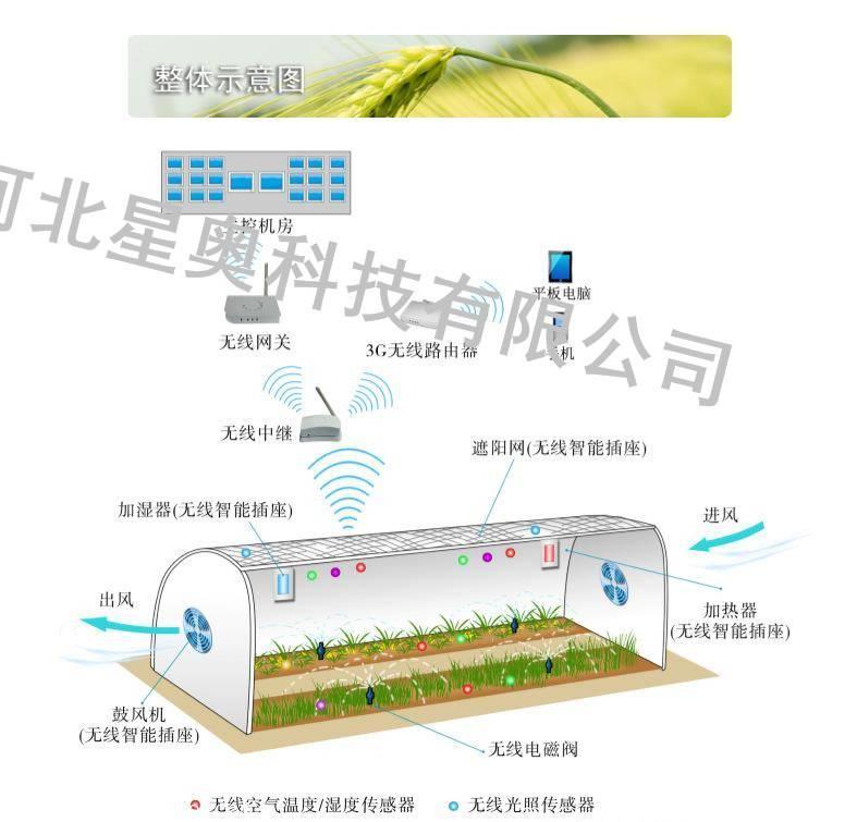 浙江温室大棚智能远程控制系统,专业农业物联网系统,质量可靠