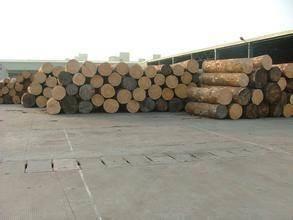 进口木材通常都容易出现的一些常见问题