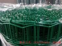 生产销售绿色农用围栏网  大棚护栏网规格  荷兰网厂直销