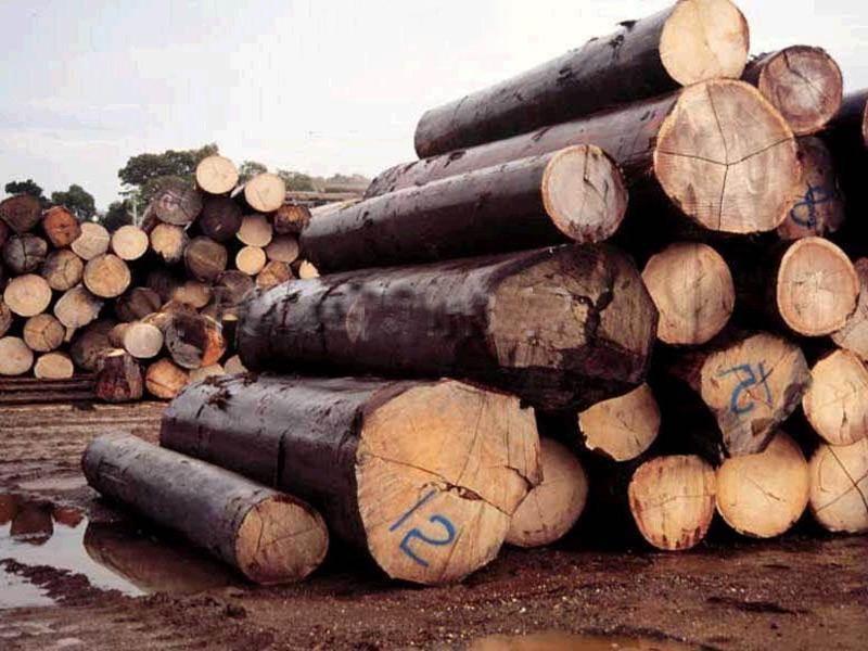 木材的一般贸易进口运作流程步骤