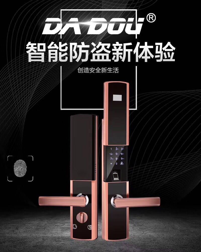 大斗智能门锁QT-Q502/滑盖