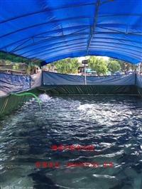 帆布水池 帆布水池价格 优质帆布水池批发