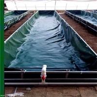 帆布水池 帆布鱼池 帆布养殖池 帆布游泳池是我司生产定做