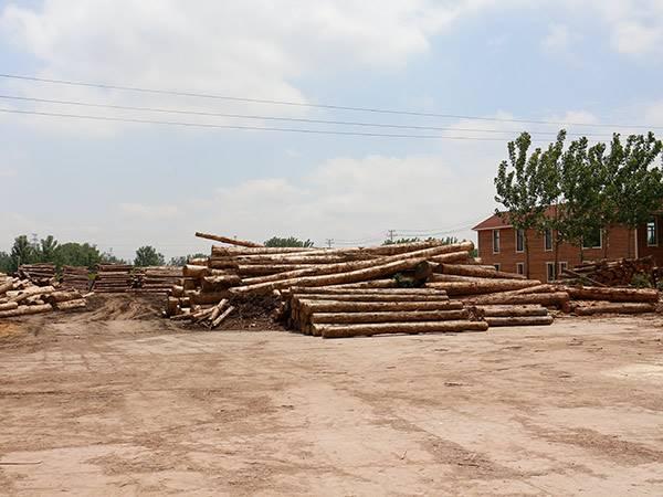建筑木方原木贸易制品 科学性木方材料