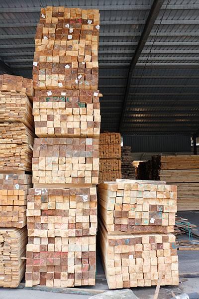 辐射松建筑木方材料 建筑工程木方批发
