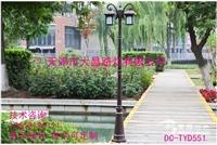 路灯户外庭院灯杆3米3.5米花园灯草坪高杆灯景观防水灯LED灯头