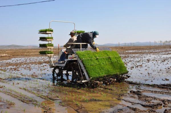如何进口农耕机|收割机进口清关|报关多种案例流程
