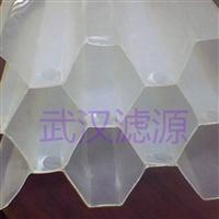 武漢濾源銷售蜂窩斜管 直管價格優惠
