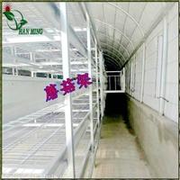 贵州大棚蘑菇架农业蘑菇大棚专用蘑菇架