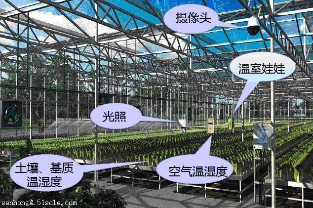 智能大棚测控系统云平台让沧州温室控制系统实现远程自动化操控