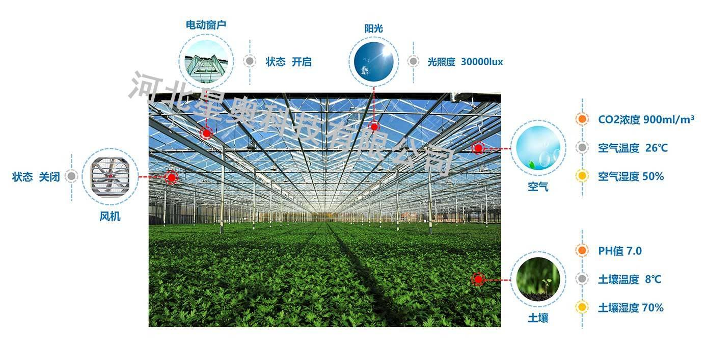 辽宁自动化大棚环境管理平台,智能温室控制解决方案,星奥科技