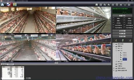 智能鸡舍环境物联网控制系统,手机电脑远程自动化控制