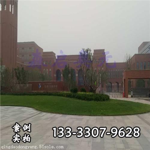 河南石家庄二中润德学校 体育运动木地板厂家案例