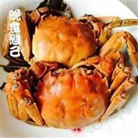 吃大闸蟹时间表-大闸蟹价格