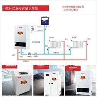 電壁掛爐采暖8kw  河北安特科技有限公司