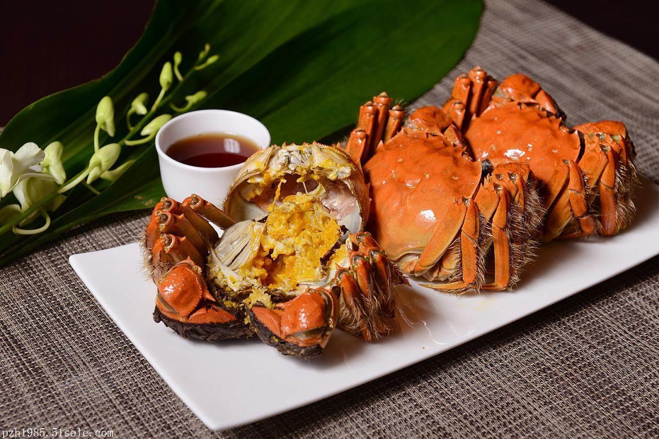 上海哪里买正宗清水蟹