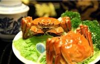 大闸蟹价格多少钱一斤