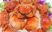 吃蟹要注意四大点-淀山湖大闸蟹