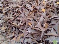 广州番禺铜粉回收单价是多少