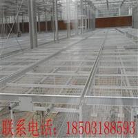 河南温室苗床网供应商 养花半自动大棚苗床 批发