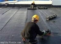 钢结构彩钢瓦金属屋面防水堵漏工程