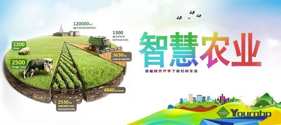 保定温室环境自动化成套控制系统-智能农业物联网监测技术领先