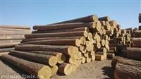 东莞木材进口报关清关代理