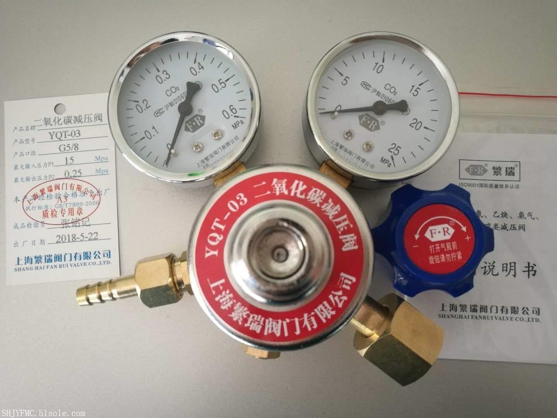 YQT-03二氧化碳减压阀 C02双表头调节器YQT03二氧化碳压力表