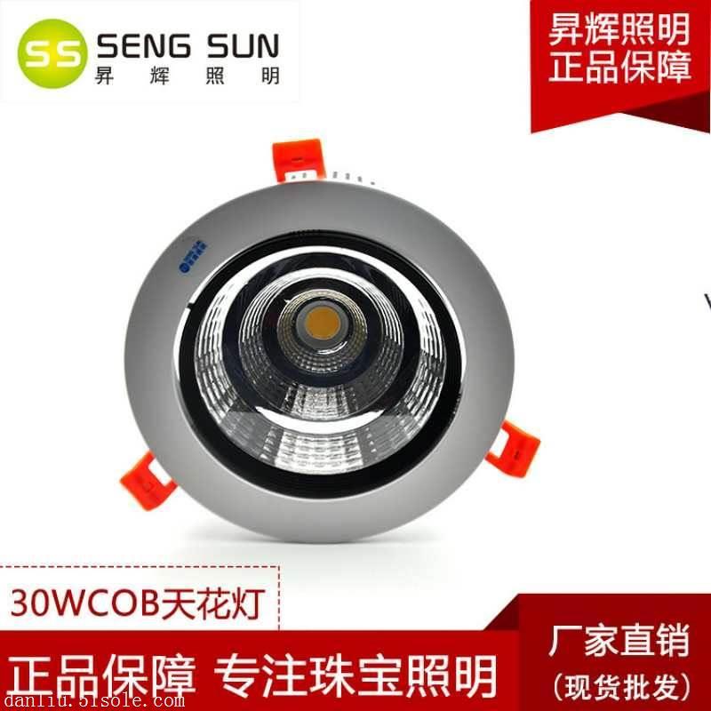 昇辉照明LED射灯嵌入式天花灯 COB射灯聚光20W/30W开孔140mm商用