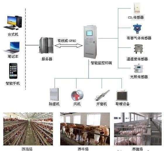 星奥养鸭场自动化控制监测系统,精准数据分析,科学智能化养殖