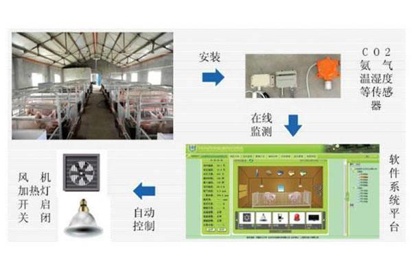 猪舍智能化环境控制系统,远程自动监测成套设备