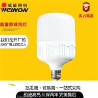 led灯泡 室内照明家用三防led灯泡厂家直销黄光白光高富帅球泡灯