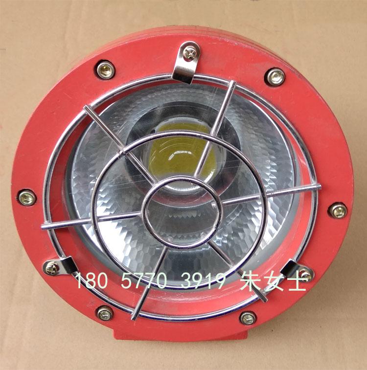 DGS70/127L隔爆型LED投光灯