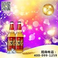 啤酒批发500毫升啤酒代理商
