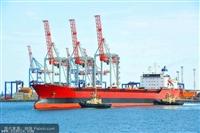 广州专业代理出口退运报关业务