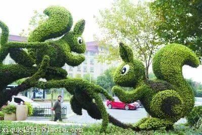 节日绿雕设计 花坛五色草制作