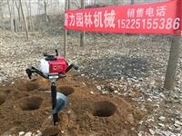 巩义雷力植树挖坑机器的报价