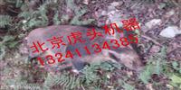 大功率野猪机介绍昭通捕猎机厂家