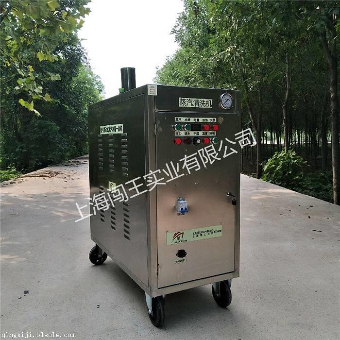 洗车机 闯王门店用蒸汽清洗设备 移动高压蒸汽洗车机厂家直销