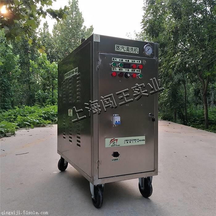 江苏CWR09A手推式燃气蒸汽清洗机 移动蒸汽洗车机参考价格