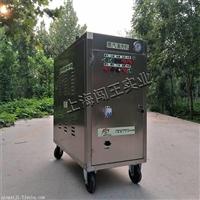 干湿可调多功能移动蒸汽洗车机