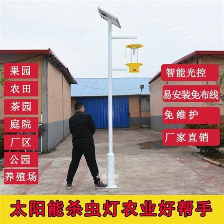 专业生产户外太阳能灭蚊灯 太阳能照明驱蚊灯 公园驱蚊灯灭蚊灯