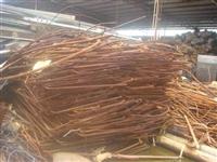 番禺区废铜回收公司-废铜收购价格新信息