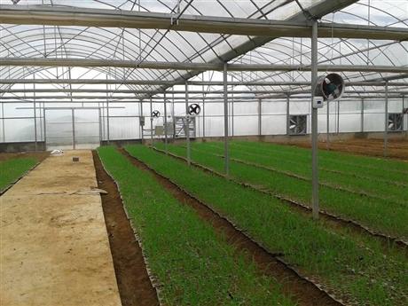 山东智能大棚控制系统,温室控制系统,农业物联网云平台