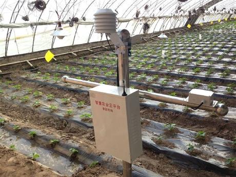 江西智能温室控制系统,江西智能大棚控制系统,农业物联网系统