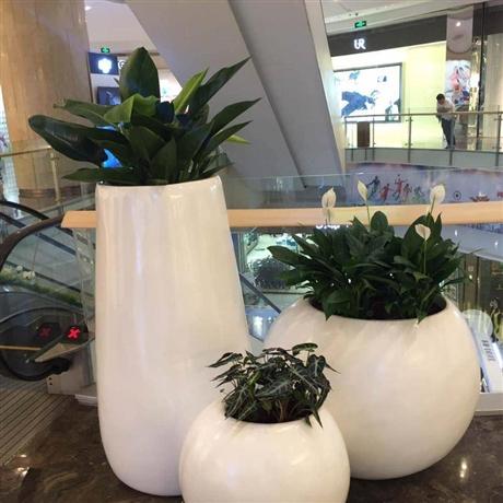 玻璃钢花盆厂家