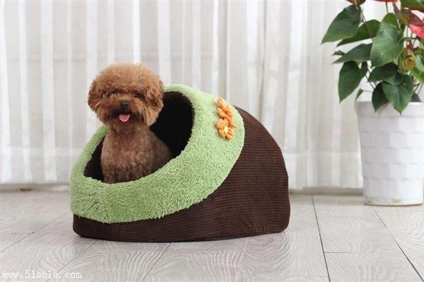 上海宠物用品进口流程介绍